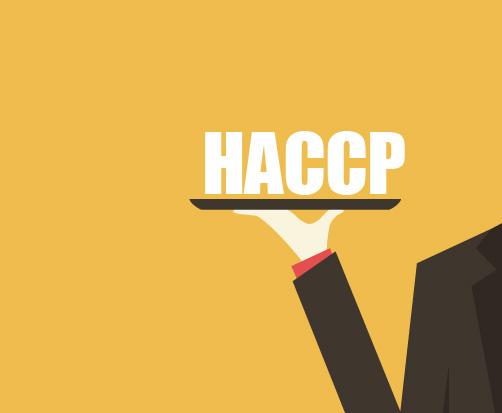 consulenza-haccp