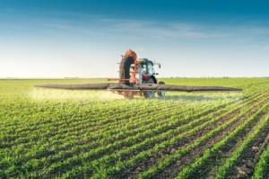 bando-emilia-romagna-imprese-agricole