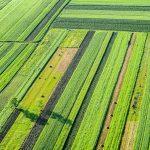 agricoltura-sostanze-chimiche-normativa