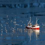 pesca-sicurezza